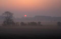 Sunrise from train window. (deltic17) Tags: sunrise sun morning dew early canon canon5dmk3 yorkshire train window misty