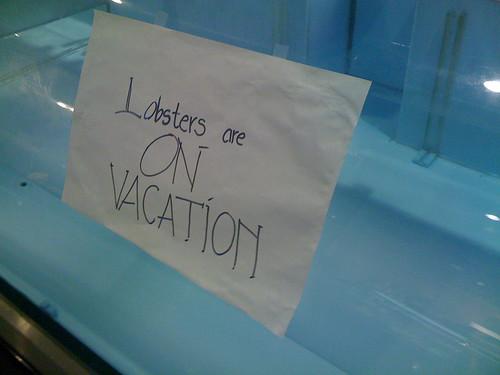 Lobster vacation