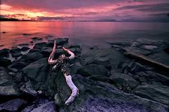 Broken Trident (Len Langevin) Tags: sunset seascape canada landscape nikon bc nanaimo vancouverisland westcoast d300 cokin georgiastrait ndgrad beautifullandscapephotography bigpicturellangevin002tnt10