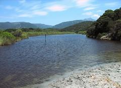 Etang et ruisseau se jetant dans la Cala di Furnellu