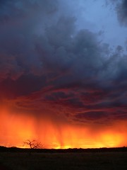 The first rains (captainadventure) Tags: africa sunset rain southafrica jonathan adventure captain kimberley barnaby benfontein