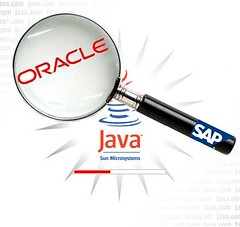 SAP vs Oracle with Java Sun