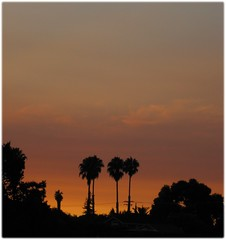 sunset1108c