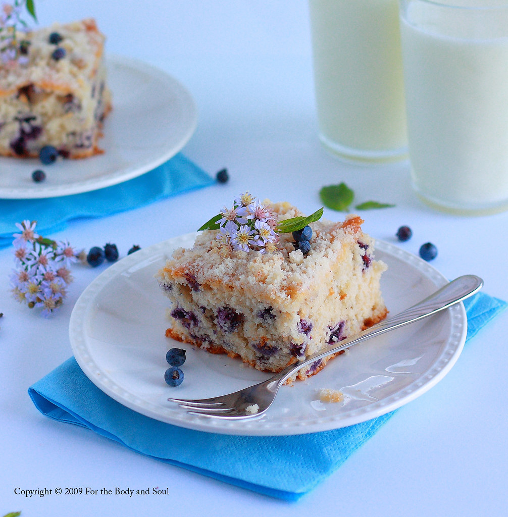 Blueberry Crumb Cake 5780shcloser copy