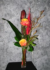 "#10ED $35 2 Roses vased with a variety of foliage, leucadendron, and red cattails. • <a style=""font-size:0.8em;"" href=""http://www.flickr.com/photos/39372067@N08/3880373706/"" target=""_blank"">View on Flickr</a>"