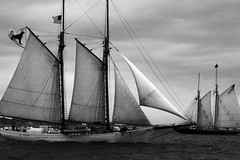 Passing in the night (well not so much night..) (Intentionally Lost) Tags: ocean sea blackandwhite bw clouds ma bay boat ship wind capecod flag vessel blackdog sail kgiantx giantonio kgiantonio kengiantonio