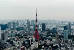 [フリー画像] [人工風景] [建造物/建築物] [街の風景] [東京タワー] [塔/タワー] [ビルディング] [日本風景] [東京]   [フリー素材]
