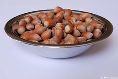 Noisettes 1 / Nuts 1