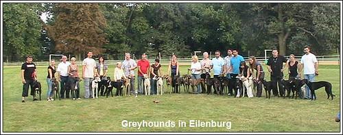 Greyhounds_Eilenburg 20092009