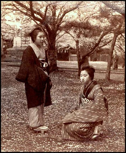 STANDING AND SQUATTING -- Two Geisha on a Sea of Fallen Cherry Blossoms in Old TOKYO, JAPAN