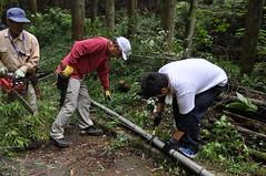 DSC_1048 (uruuruurusu) Tags: house bamboo remake
