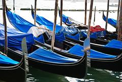 Venezia_2009_246