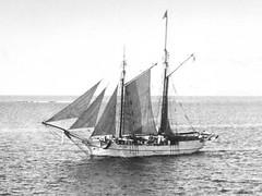 Shimizu Maru