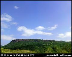 Taqah Mountains, Dhofar (Shanfari.net) Tags: flowers plants nature al natural ericsson sony greenery cave oman salala zufar salalah  sultanate dhofar  khareef  haq    dufar   taqah     governate  dhufar madeinat  darbat taiq c905 dofar  raythut  thofar thufar