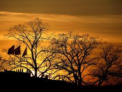 Les couleurs de l'me (* galaad *) Tags: schweiz switzerland suisse lumire couleurs arbres silence svizzera crpuscule genve mouvement obscurit ombres bruit saison embrujo me svizra climat confoederatiohelvetica jeanjacquesrousseau galaad