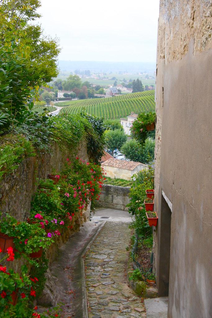 Saint Emilion Pathway and Vinyards
