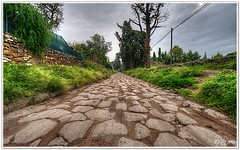 Via Appia Antica - Appian Way (Enrico P.) Tags: rome appia romani impero 5photosaday flickraward