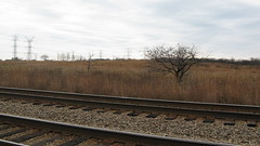 Illinois November prairie landscape. Morton Grove Illinois. November 2009.
