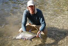 Bluefin trevally caught on white popper, Huahine