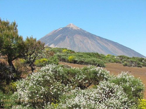 Matices delTeide