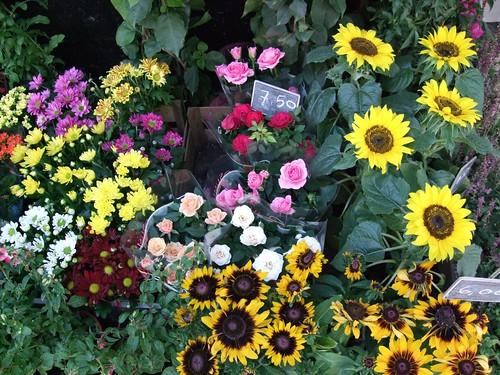 quiosque de flores