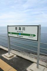 青海川 (6).JPG