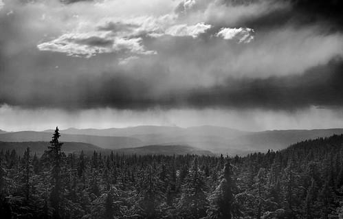 Distant Rain I