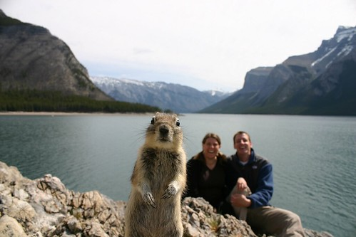 Thumb La foto viral del Crasher Squirrel