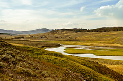 HAYDEN VALLEY (bydamanti) Tags: beautiful landscapes yellowstonenationalpark wyoming yellowstoneriver gmt misterrogersneighborhood haydenvalley theamericanwest americaamerica heavenearth royalgroup majesticnature crazyaboutnature landscapedreams oneearthonehome absolutelystunningscape justonerule capturenature kornrawieegallery greatpicturesoflandscapes comefromlandandsea favoritelandscape magicuniverse yellowstonevalleysandviews