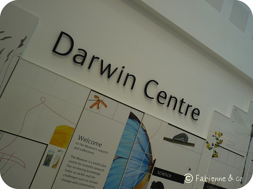 Darwin Centre #01