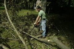 _MG_6481.JPG (zimbablade) Tags: trees sleepyhollow dougmiller videopoem