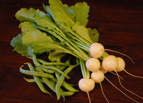 hakurei turnips and green beans