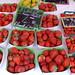 Cours Saleya_2