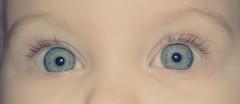 *Bright Tomorrow* (bia.hvid) Tags: blue face kids children eyes child watching occhi sguardo future sight tomorrow viso futuro domani bambino guardare