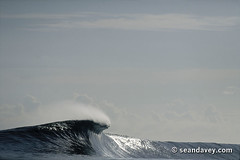 An ominous looking wave rearing up on an outer reef in Tahiti. (Sean Davey Photography) Tags: pictures seascape color green nature water horizontal glitter danger contrast photography dangerous shiny energy surf power wave strong curl tahiti surge curling shimmer greenenergy frenchpolynesia greenpower oceanwave teahupoo seawave oceanswell seandavey oceanpower seaswell photographyfineart finephotographyart curlingwave wavesenergy seawaveenergy oceanenergy oceanwavepictures seandaveyphotography