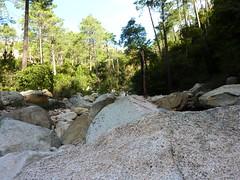 Déjeuner au ruisseau de Peralzone : vue vers l'amont