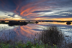 Yolo Bypass (Ivan Sohrakoff) Tags: sunset reflection clouds woodland photography wetlands sacramento davis yolocounty weirs yolo yolobypass wildlands neutraldensity floodbypass landscapeyoloyolobypasssacramentodaviswoodlandwetlandswildlandsfloodbypassweirsreflectionsunsetcloudsneutraldensityphotographylandscape
