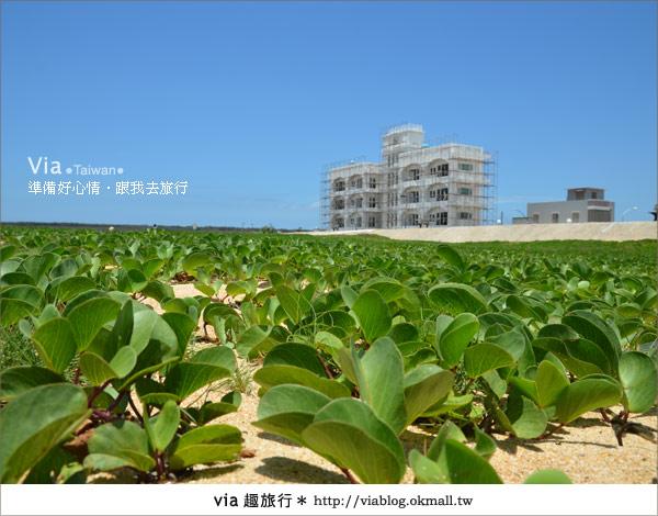 【澎湖沙灘】山水沙灘,遇到菊島的夢幻海灘!8