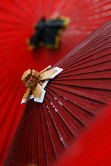/After rain-2/2 (nobuflickr) Tags: red japan kyoto      miyagawatyou