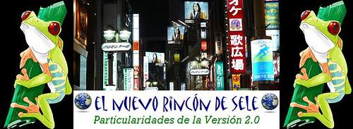 Banner el Nuevo Rincón de Sele por ti.