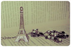 43/365 the eiffel tower (BlackberryLight) Tags: paris france silver book bokeh text eiffeltower chain souvenir bracelet 365 project365 nikond60