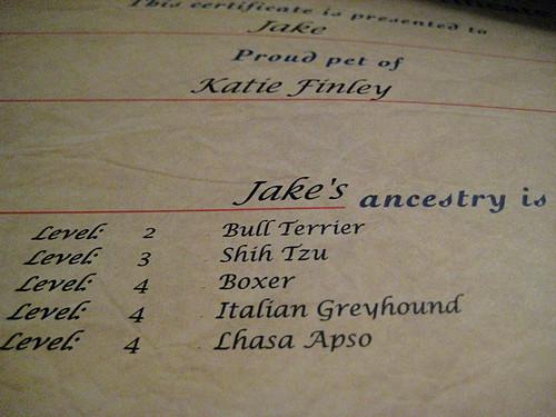 ancestry.