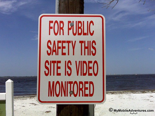 IMG00265-Sanibel-Island-beach-video-monitored