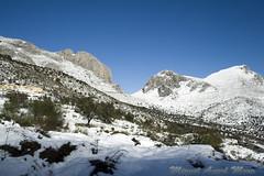 IMG_8066 (Miguel Angel Mora (GSi_PoweR)) Tags: espaa snow andaluca carretera nieve nevada sunday bosque granada costadelsol domingo maroma mlaga mountainroad meteorologa axarqua puertomontaa zafarraya sierraalmijara caosalcaiceria