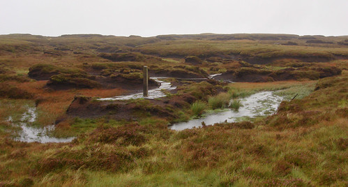 Source of the River Severn Plynlimon (Pumlumon)