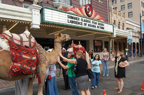 DSC_0299 by The Paramount Theatre, on Flickr