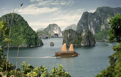 Indochina Sails on Halong Bay by you.