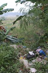 Local Landfill