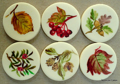 Autumn Wedding discs (neviepiecakes) Tags: autumn fall leaves oak berries acorn hazel rowan beech paintedcake painteddiscs