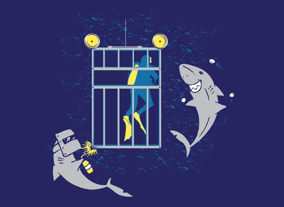 playera-tiburon
